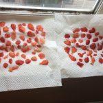 グルテンフリー食に挑戦4